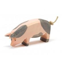 Ostheimer Schwein gefleckt Kopf tief