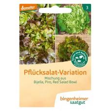 bingenheimer saatgut Pflücksalat-Variation Eichblattsalat Samen G762N